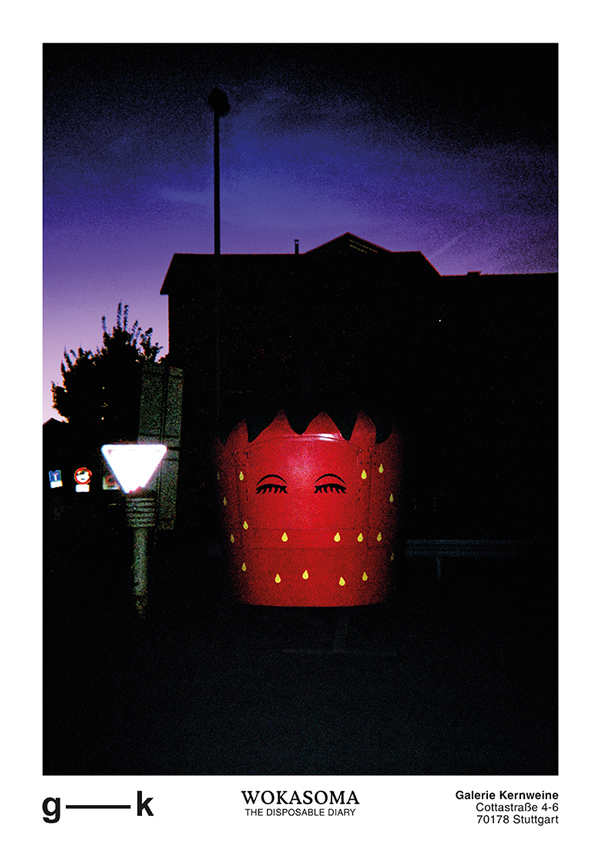 wokasoma florian schröder einwegkamera analog fotografie disposable diary pop art kunst galerie kunsthalle